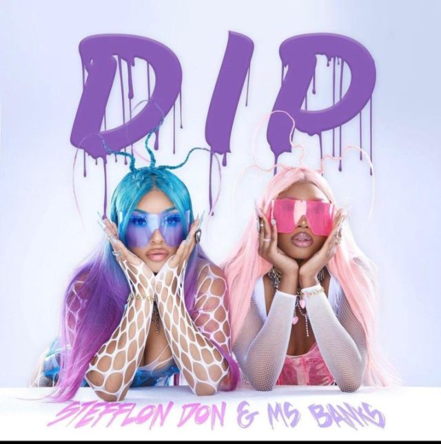 Stefflon Don Ms Banks New Song Dip