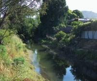 Corte Madera canal