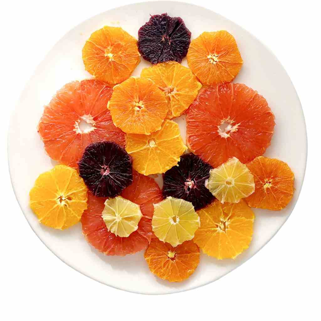 Top down shot of white plate with slices of pink grapefruit, navel oranges, tangelos, blood oranges, and lemon. This is one of the steps in making Simple Citrus Salad.