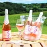 世界農業遺産の能登半島 能登の「山と海と人」が育んだ極上のブドウから造る本格的生ワイン『能登ワイン』【穴水町】