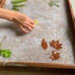 輪島田園風景で楽しもう!オリジナル紙漉き体験「能登仁行和紙」【輪島市】