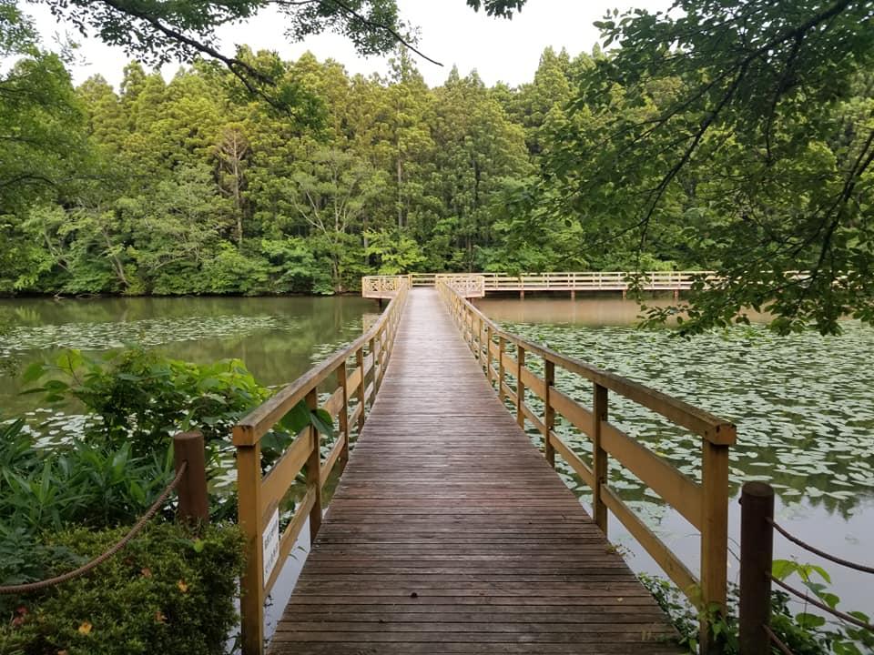 「古墳公園とりや」は遊び方いろいろ、みんなが楽しめる広大な公園【中能登町】