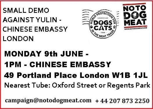 Flash Demo Chinese Embassy, London Tomorrow at 1pm!