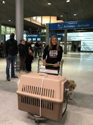 Felicity at Paris airport