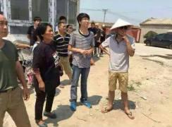 #707Tianjin dog truck rescue