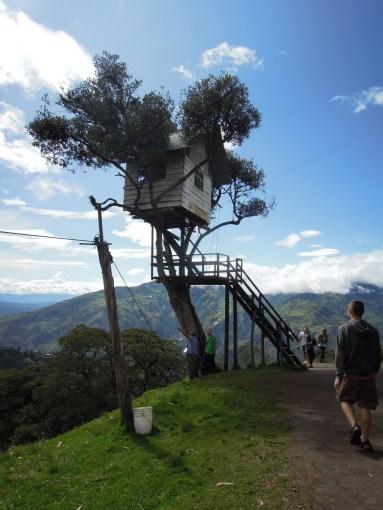 domek na drzewie_casita del arbol_a tree house