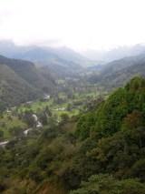 n_Salento and Cocora Valley (21)
