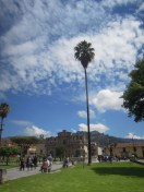 Cajamarca (3)