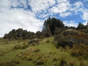 Cajamarca (73)