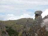 Cajamarca (90)