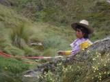 Cajamarca (98)