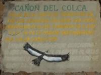 Cruz del Condor (4)