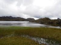Parque Nacional Cajas (11)