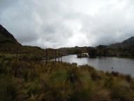 Parque Nacional Cajas (20)