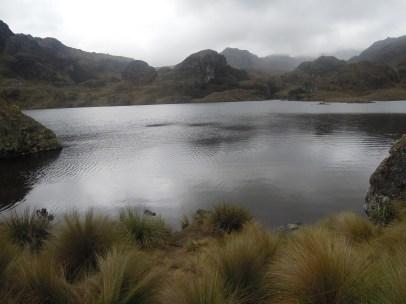Parque Nacional Cajas (23)