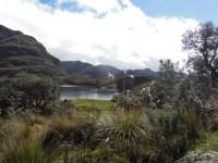 Parque Nacional Cajas (6)