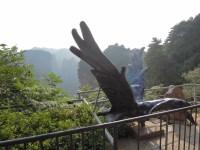 Zhangjiajie 34