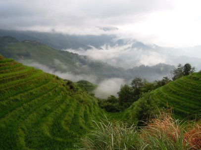 Longji - Dashai Village - Rice Fields (116)