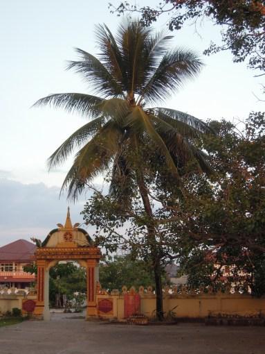 Vientiane (97)