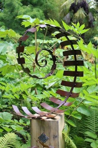 Spiral Fern on oak