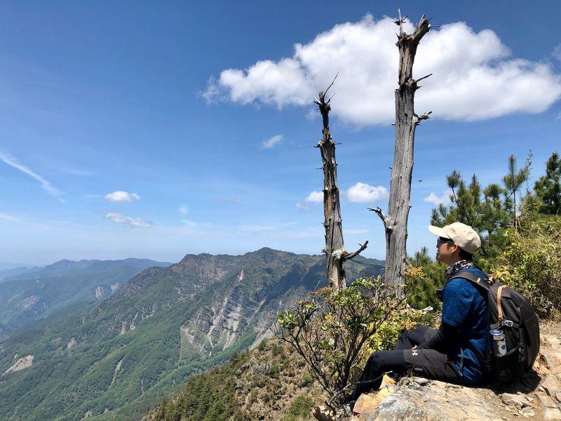 玉山前峰與枯樹