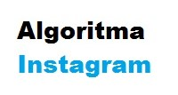 Bagaimana Brand Bisnis Bisa Memaksimalkan Algoritma Instagram untuk Profit