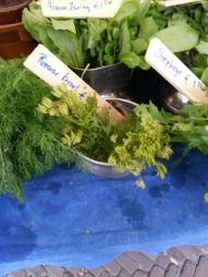 Chervil, to go with the fish
