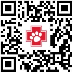 Notpfote Animal Rescue Kleinanzeigen