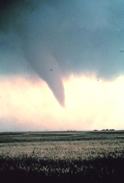 Tornado_at_beginning_of_life_-_NOAA