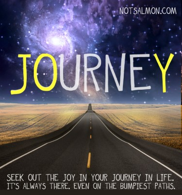 Image result for journey of life