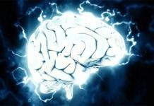 muse meditation headset brain wave detection