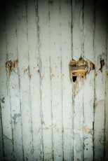 Detail from harbour building - this door is a favourite subject of mine