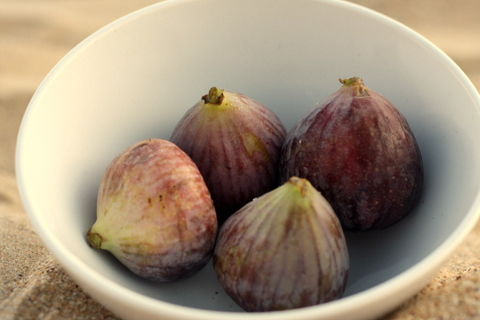 Figs in season