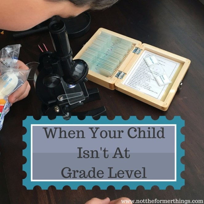 When your child Isn't At Grade Level (1)