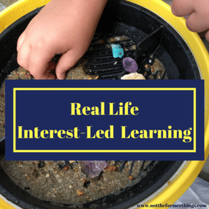 real-life-interest-led-learning