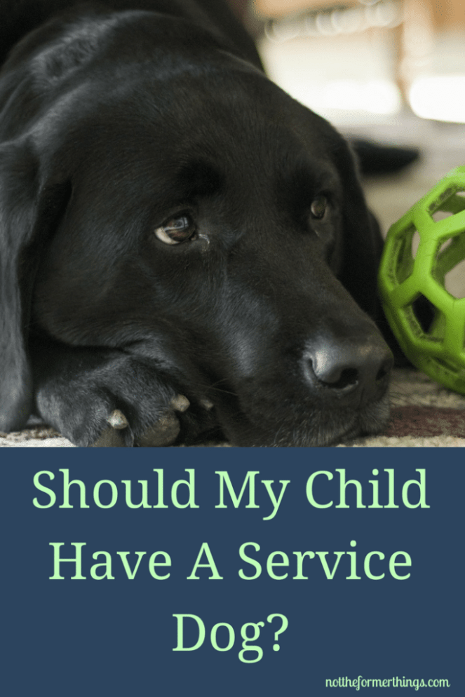 Should My Child Have A Service Dog? - ADHD, Autism, Anxiety, Bipolar