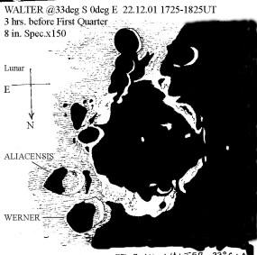 Walled plain Walter - Bryan Lilley