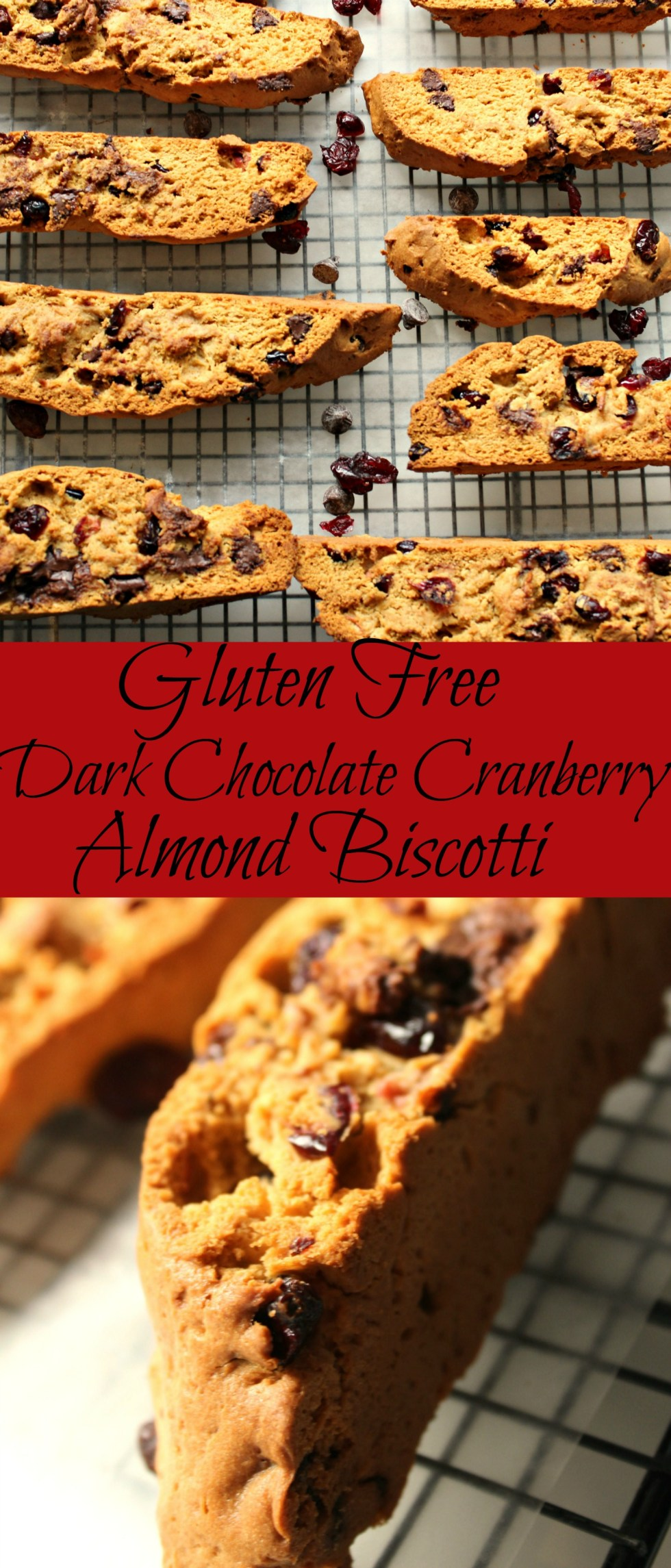 Dark Chocolate Cranberry Almond Biscotti Pin