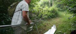A bat surveyors tale