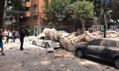 temblor (2)