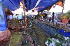 nacimiento plaza del comercio (2)
