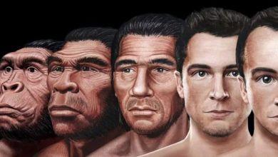 Photo of Científicos revelan como podría ser el rostro del 'hombre del futuro'