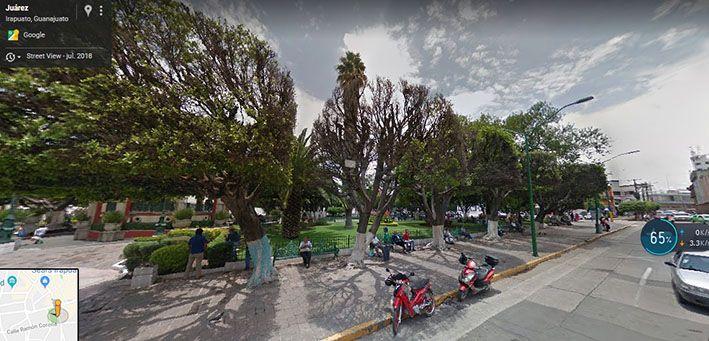 Árboles jardín Miguel Hidalgo, panorámica