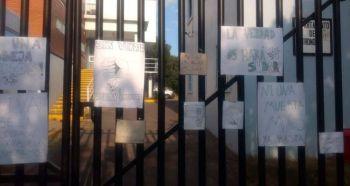 abejas_universidad_guanajuato_estudiantes (4)