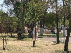 parque_albino_garcia_salamanca (3) (Personalizado)