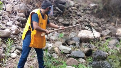 Photo of SSG elimina más de 2 mil toneladas de cacharros en acciones de combate al dengue entre los 46 municipios