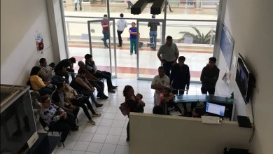 Photo of Atenderá  30 citas diarias departamento de licencias