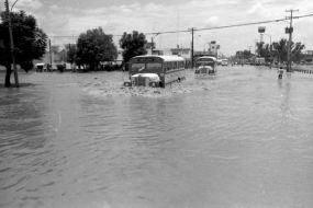Inundación de Irapuato (5)