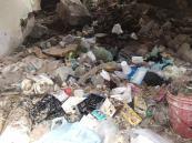 basura inmueble abandonado abasolo (3)