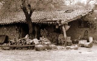 vida en el campo, Fotos juan López Luna y ADP. Fotos antiguas de Irapuato (15)